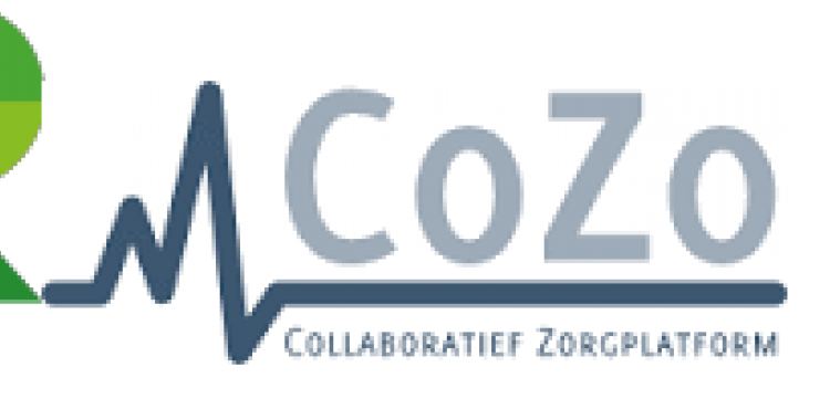 CoZo and Realdomen make it work together