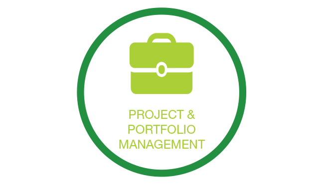 Create business value through project and portfolio management